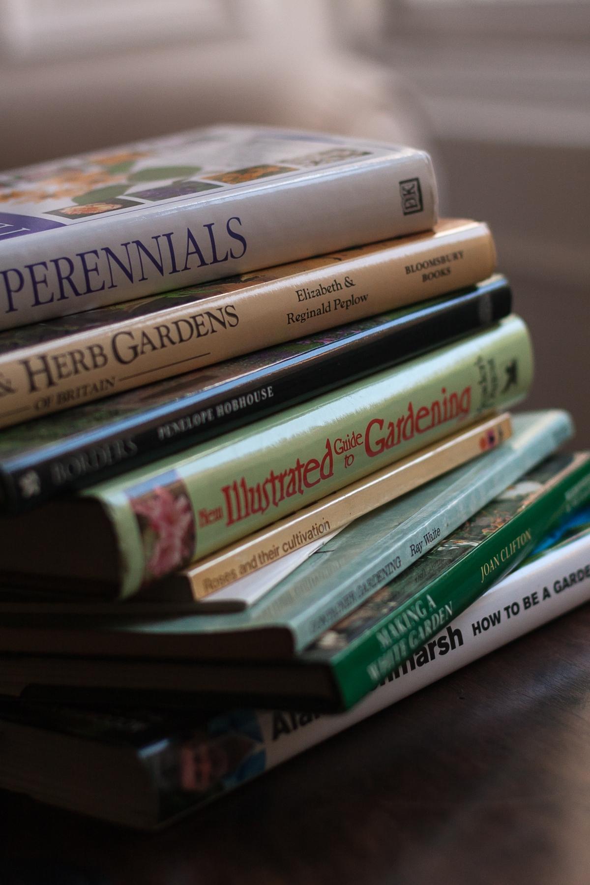 Gardening wisdoms from my first gardeningyear