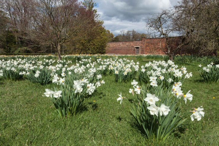 The Gardens at Arley Hall Edinburgh Garden Diary