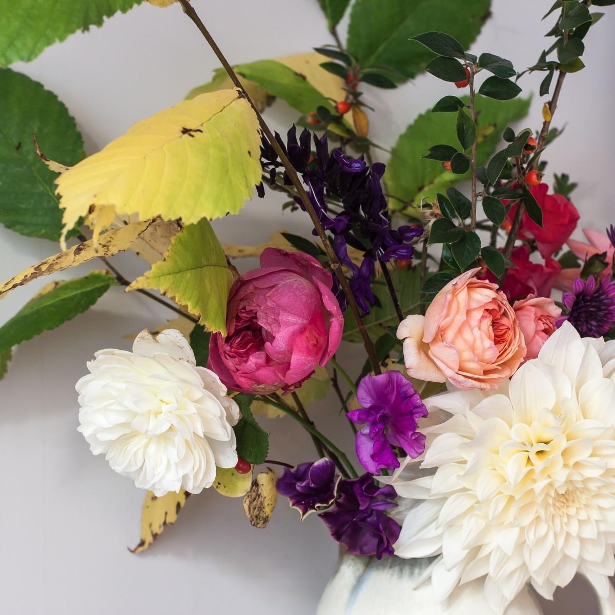 Autumn's Last Hurrah