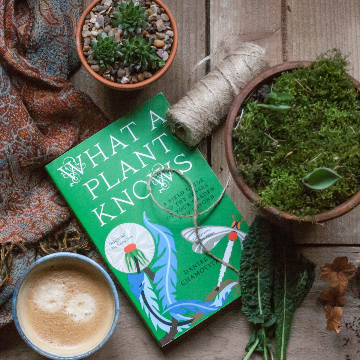 Book Review: 'What a Plant Knows' by DanielChamovitz