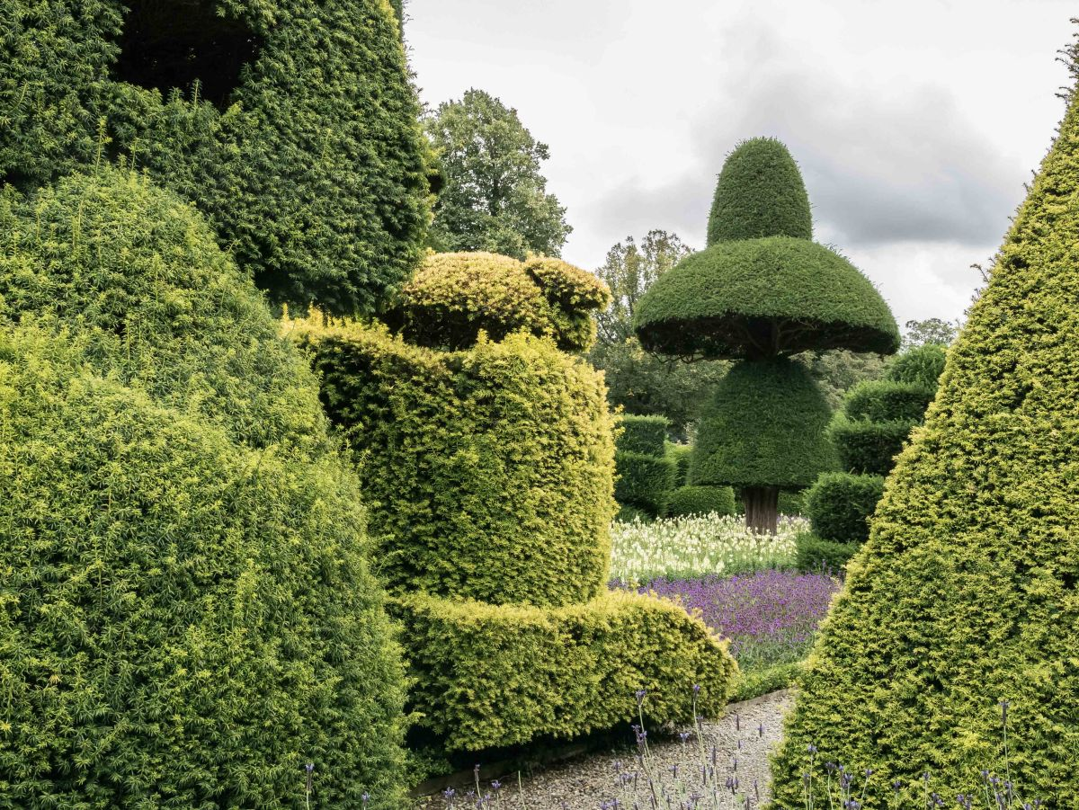 Two Topiary Gardens